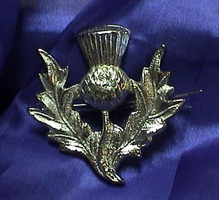 Scottish Thistle Broach